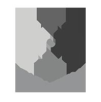 Logo Paradigm blanc